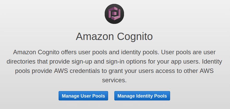 AWS Cognito entry page